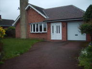 Detached Bungalow to rent in Pineview Close, Mansfield
