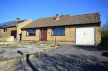 Detached Bungalow for sale in Pittywood Road...