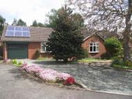 3 bed Bungalow in Annefield Close...