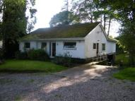 Bungalow for sale in College Close, Madeley...