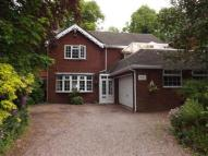 Detached property for sale in Sidmouth Avenue...