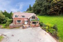 5 bed Bungalow in Underwood Road...