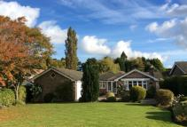Bungalow for sale in Anglesey Drive, Poynton...