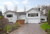 Detached home in South Park Drive...