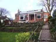 The Coppice Bungalow for sale
