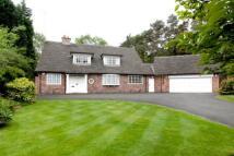 Bungalow for sale in Spencer Brook, Prestbury...