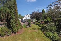 Bungalow for sale in The Village, Prestbury...