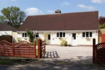 4 bedroom Bungalow in Lower Ashley Road...
