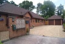 Bungalow in Avon Park, Ringwood...
