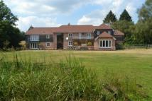 5 bedroom Equestrian Facility house for sale in Abbotswell Road, Frogham...