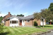 Bungalow for sale in Early Bank, Stalybridge...