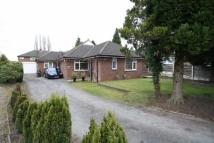 Bungalow for sale in Green Drive, Wilmslow...