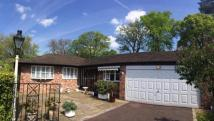 Bungalow for sale in Hunters Mews, Wilmslow...