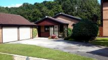 Bungalow for sale in Clough Avenue...
