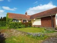 2 bed Bungalow in Bradbury Lane...