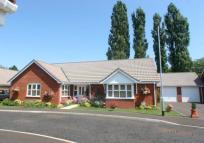Bungalow for sale in Lark Drive, Attleborough...