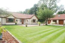 Bungalow for sale in West Carr Road...