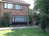 semi detached property for sale in The Limes, Framlingham...