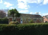 Bungalow for sale in Mill Road, Occold, Eye...