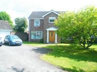 4 bed Detached house in Drum Field...