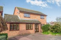 Detached property for sale in Temple Pattle, Brantham...