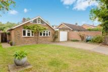 Bungalow for sale in Blackheath, Wenhaston...