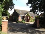 Bungalow for sale in Walpole Road, Halesworth...