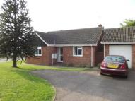 Bungalow for sale in Dukes Drive, Halesworth...