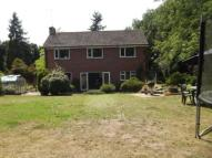 Detached home for sale in Sarsen Close, Halesworth...