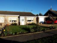 2 bed Bungalow for sale in Dukes Drive, Halesworth...