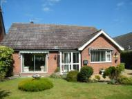3 bed Bungalow in Beech Close...