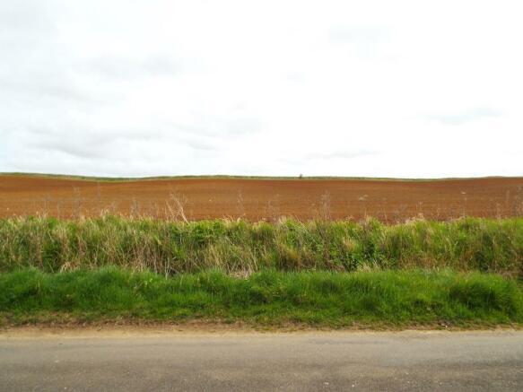 Rear Field Views