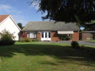 Bungalow in Folly Lane, Copdock...