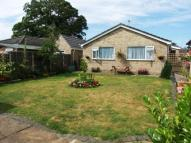 Bungalow for sale in Shadwell Close, Weeting...