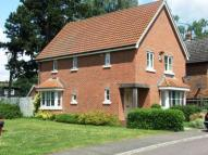 Detached property for sale in Walton Way, Brandon...
