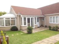 Bungalow for sale in Walnut Tree Close...