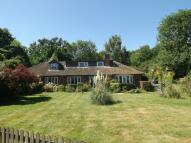 Lamarsh Hill Bungalow for sale
