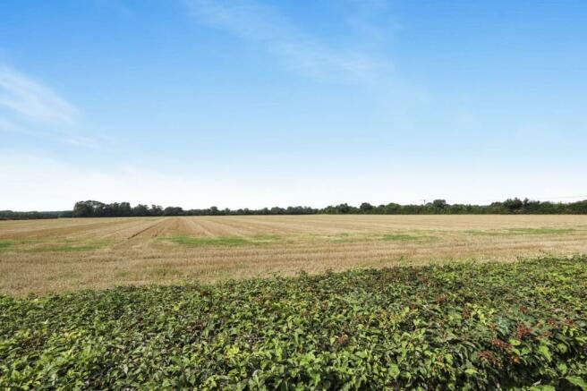 Fields Views