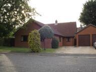 Bungalow in Holfen Close, Martlesham...