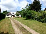 Bungalow for sale in Main Road, Martlesham...