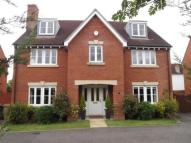 Detached house for sale in Albemarle Link...