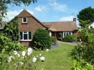 Bungalow for sale in The Avenue, Wivenhoe...
