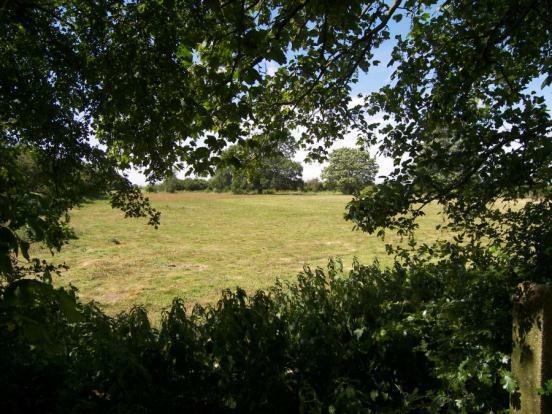 Fields To Rear