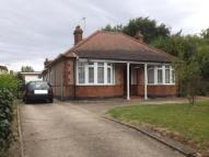 2 bedroom Bungalow for sale in Old London Road, Rawreth...