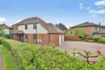 4 bed house for sale in Hammond Crescent...