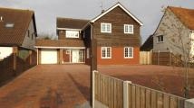 Thorpe Road Detached property for sale