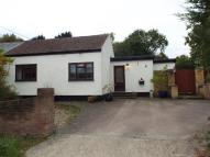 3 bed Bungalow for sale in Disraeli Road, Rayleigh...