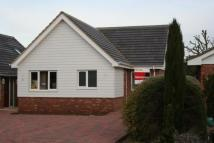 Bungalow in Forrest Close...