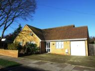 3 bed Bungalow for sale in Vaughan Avenue...