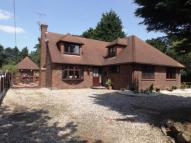 Detached house for sale in Branksome Avenue...